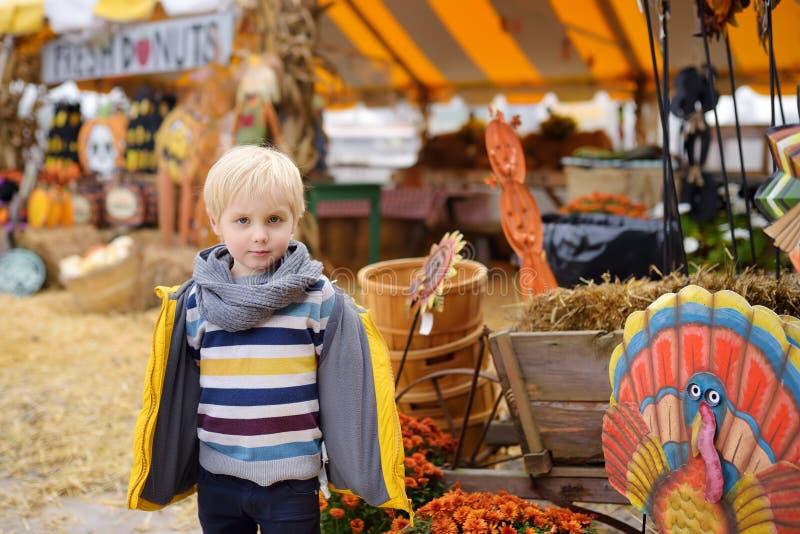 Rapaz pequeno na feira agrícola do outono tradicional em uma exploração agrícola da abóbora fotos de stock