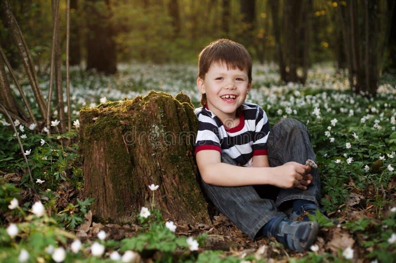 Rapaz pequeno na floresta no campo de flores foto de stock