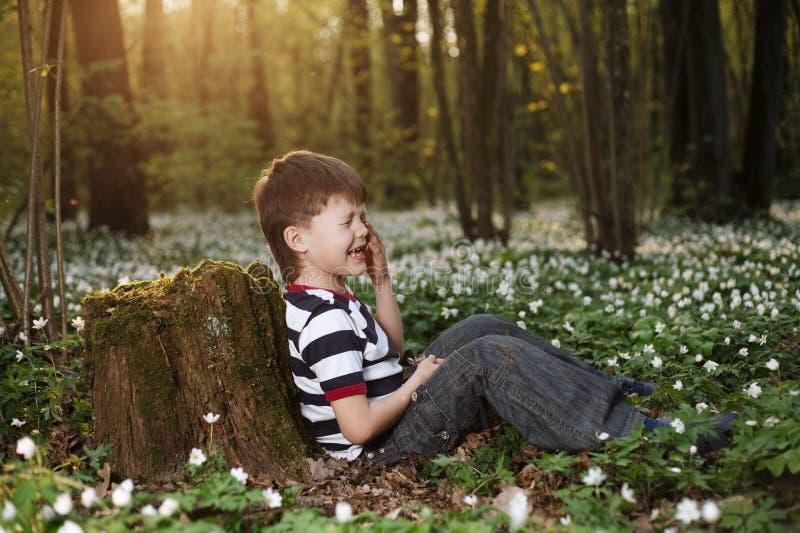 Rapaz pequeno na floresta no campo de flores imagem de stock