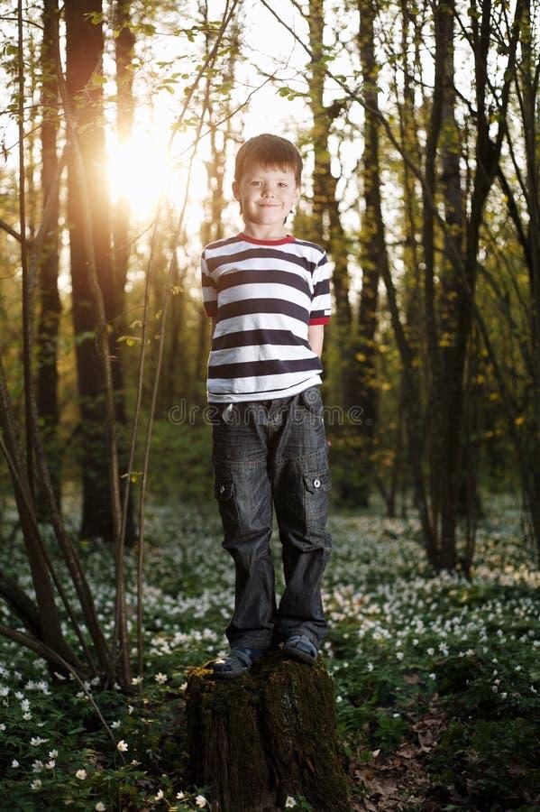 Rapaz pequeno na floresta no campo de flores imagem de stock royalty free
