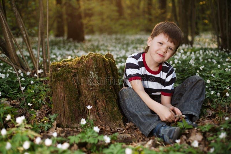 Rapaz pequeno na floresta no campo de flores imagens de stock