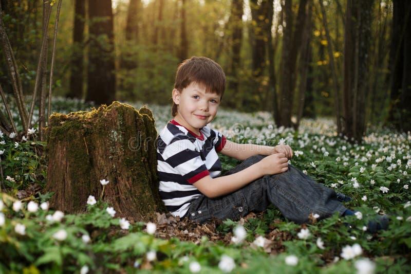 Rapaz pequeno na floresta no campo de flores fotos de stock