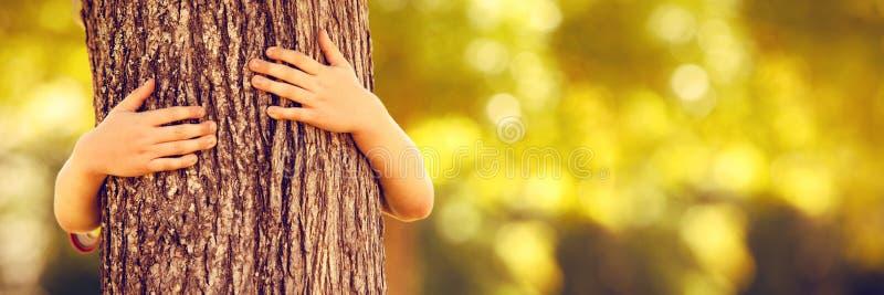 Rapaz pequeno no parque que abraça a árvore fotografia de stock royalty free