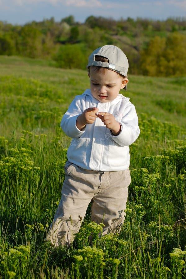 Rapaz pequeno no prado fotos de stock