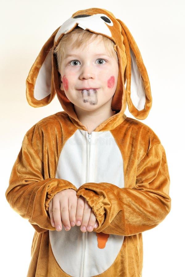 Rapaz pequeno no traje do coelho com dentes pintados imagens de stock