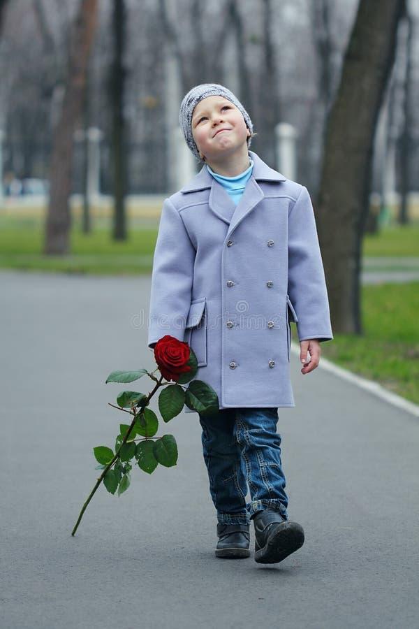Rapaz pequeno que anda o parque fotos de stock royalty free