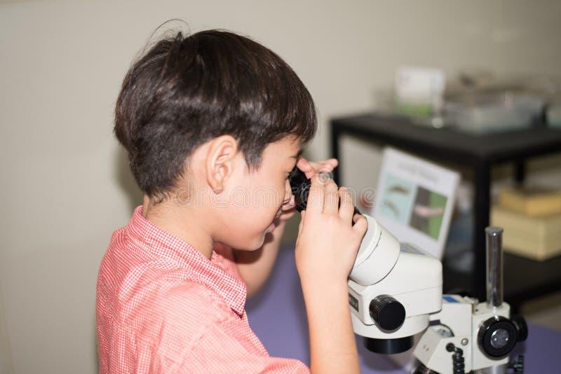 Rapaz pequeno que aprende a classe da ciência com o microscópio na classe foto de stock