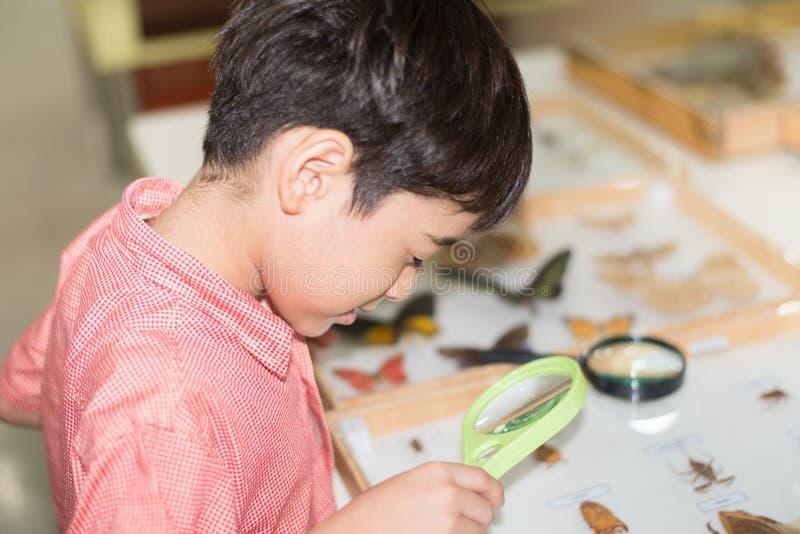 Rapaz pequeno que aprende a classe da ciência com o microscópio na classe fotografia de stock