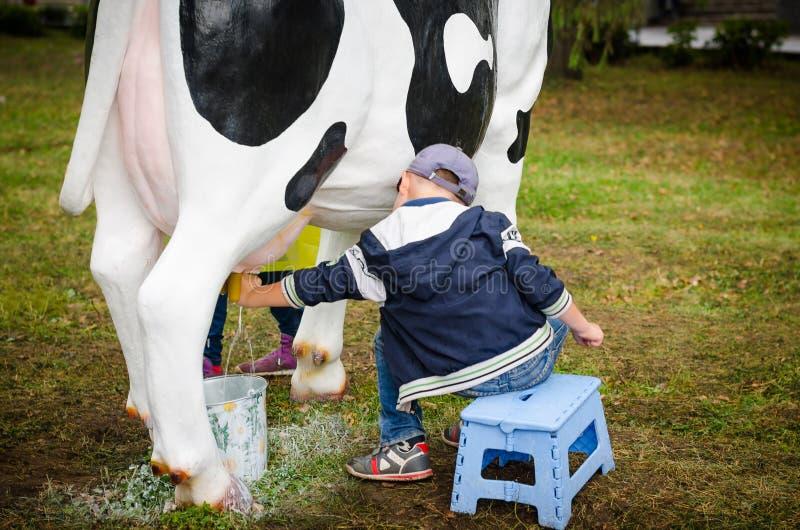 Rapaz pequeno que aprende ordenhar uma vaca foto de stock royalty free