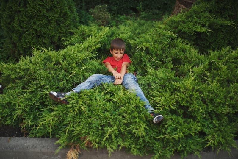 Rapaz pequeno que encontra-se no zimbro fotografia de stock