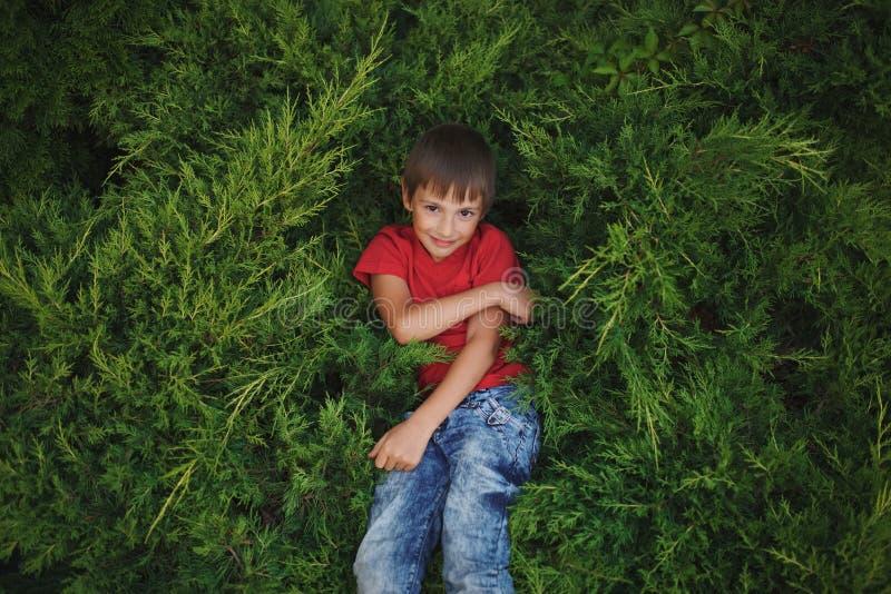 Rapaz pequeno que encontra-se no zimbro fotografia de stock royalty free
