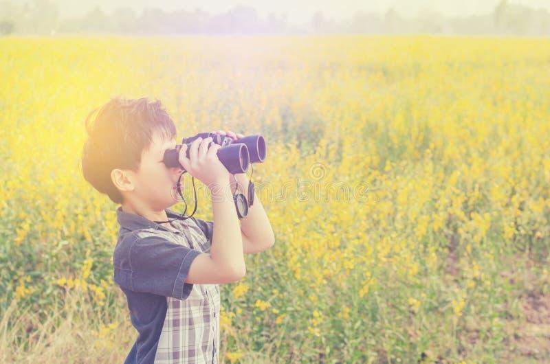 Rapaz pequeno que está no campo de flor fotos de stock royalty free