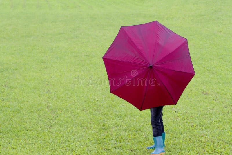 Rapaz pequeno que guarda o guarda-chuva Fundo da grama verde outdoor Vista traseira foto de stock