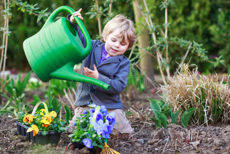 Rapaz pequeno que jardina e que planta flores no jardim foto de stock royalty free