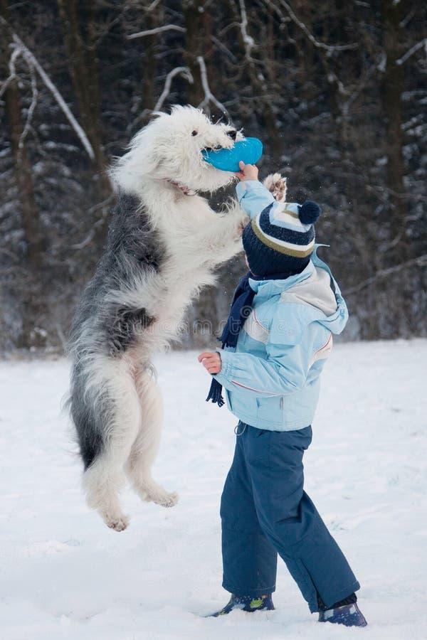 Menino que joga com seu cão fotos de stock