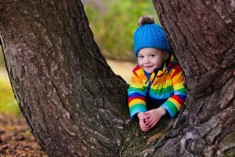 Rapaz pequeno que joga no parque do outono fotografia de stock