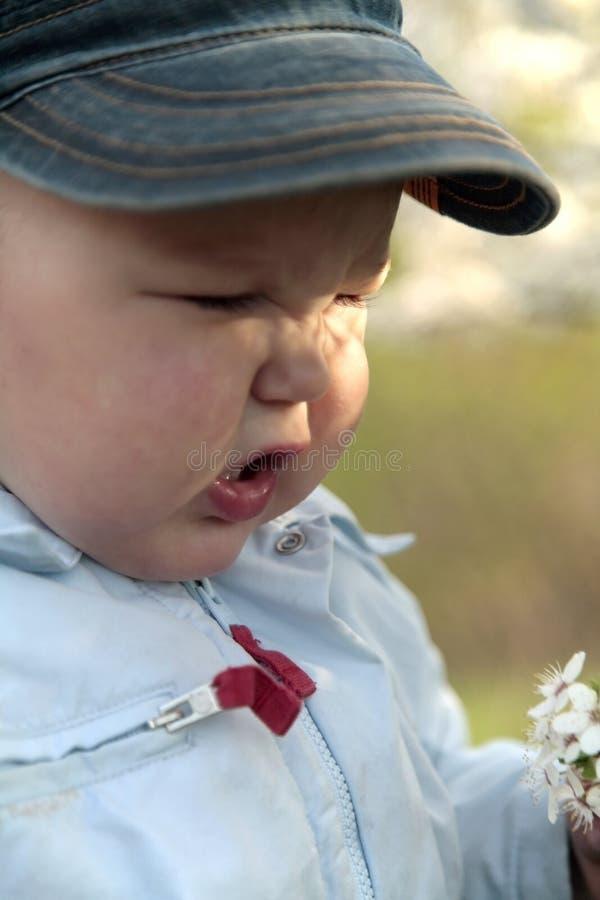 Rapaz pequeno que sneezing imagem de stock royalty free
