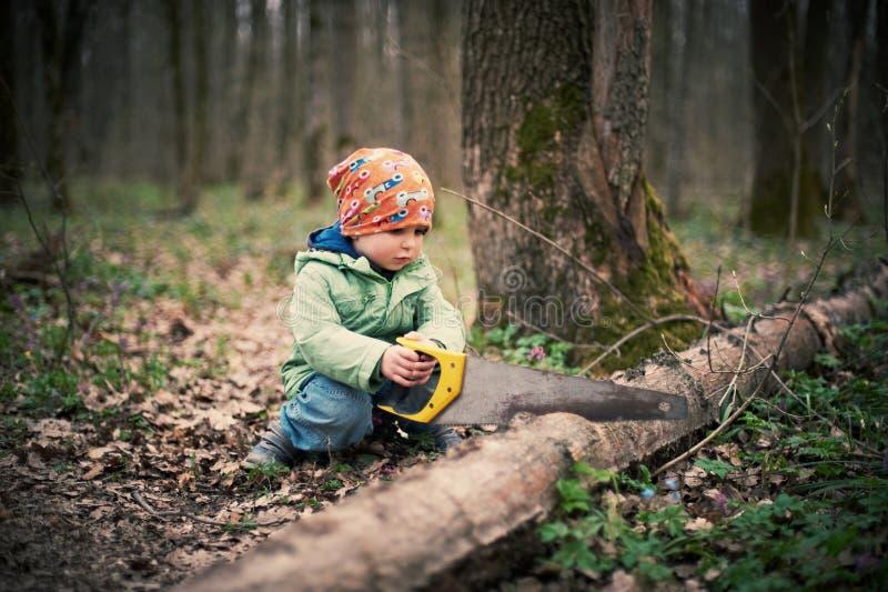 Rapaz pequeno que vê uma árvore caída na floresta imagens de stock royalty free