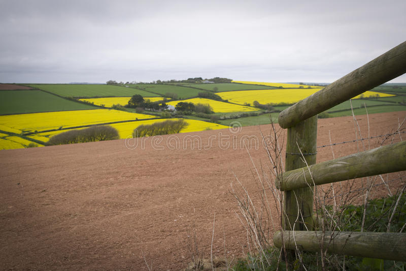 Field and brown field with fence in the foreground. Grey sky, yellow fields in patchwork with a brown field and wooden fence royalty free stock photos
