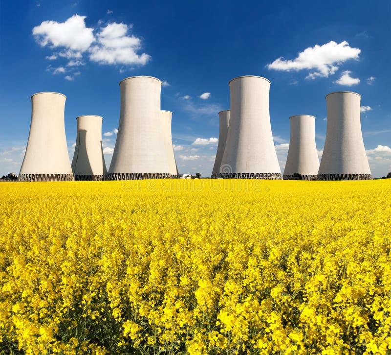 Rapesed pola elektrowni jądrowej chłodniczy wierza zdjęcie royalty free