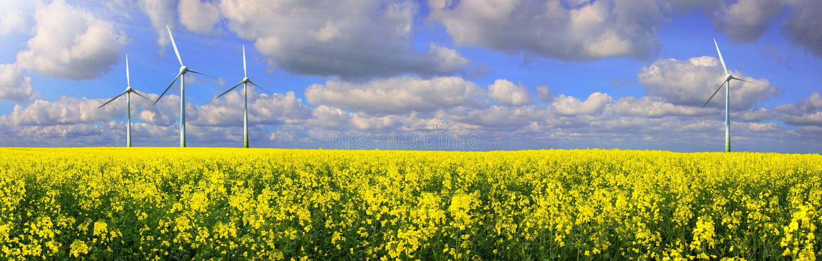 Rapeseed Field With Wind farm - Renewable Energy Panorama stock photography