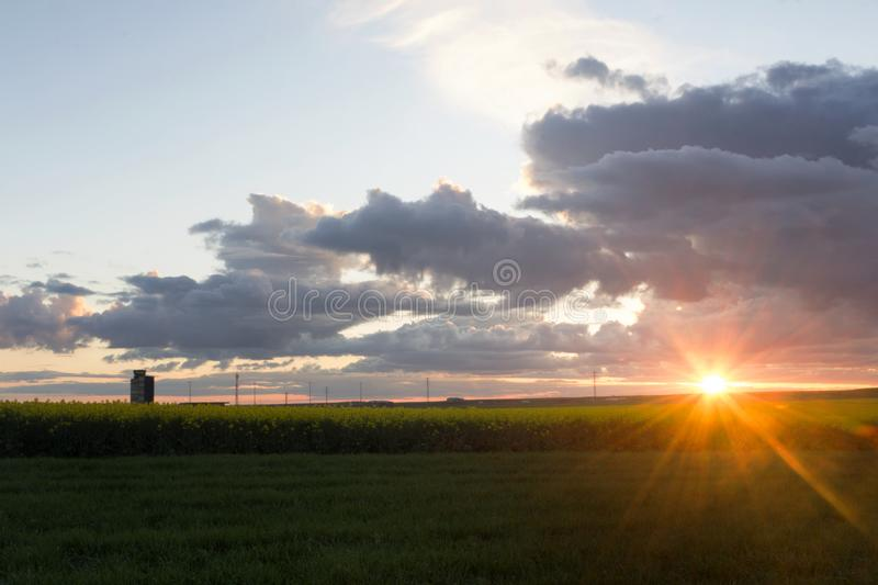 Rapeseed fields with a cloudy sky at sunset. Landscape with fields of rapeseed. Big clouds in a blue sky, in the sunset stock photography