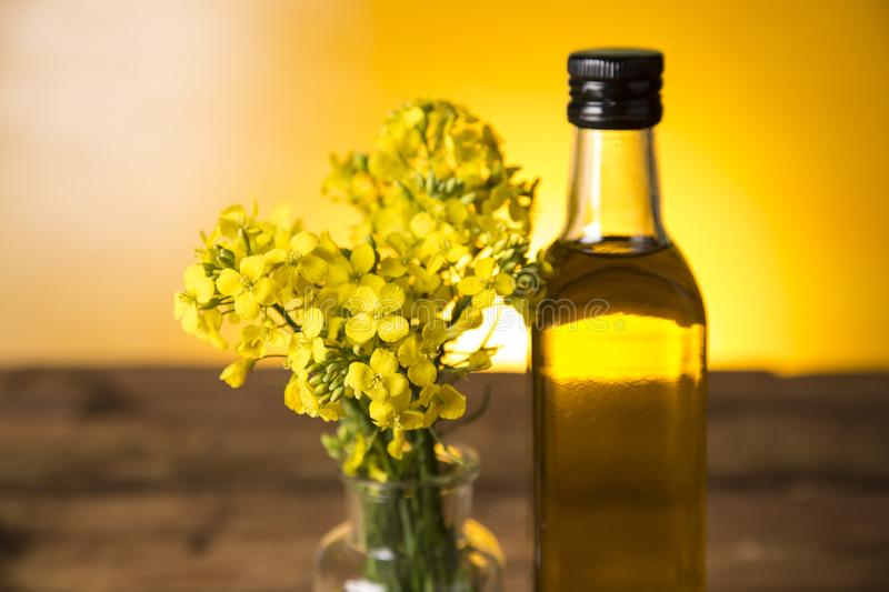 Rapeseed flowers and rapeseed oil in a bottle on the table stock image