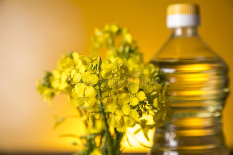Rapeseed flowers and rapeseed oil in a bottle on the table royalty free stock photo