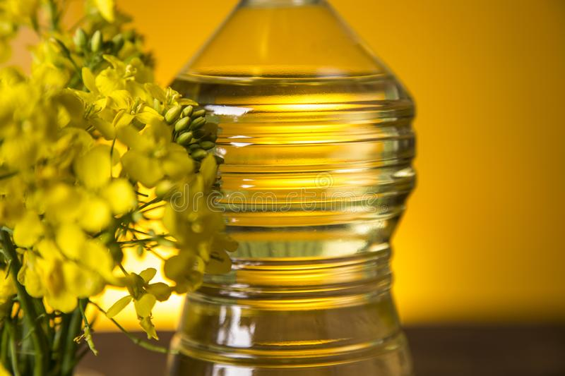 Rapeseed flowers and rapeseed oil in a bottle on the table stock photography