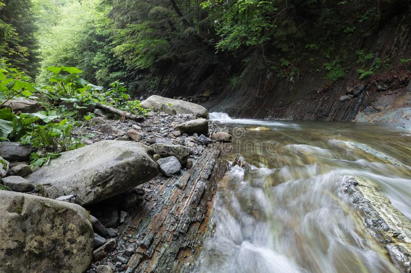 The rapid flow of river water timber. Large rocks on the shore royalty free stock photo