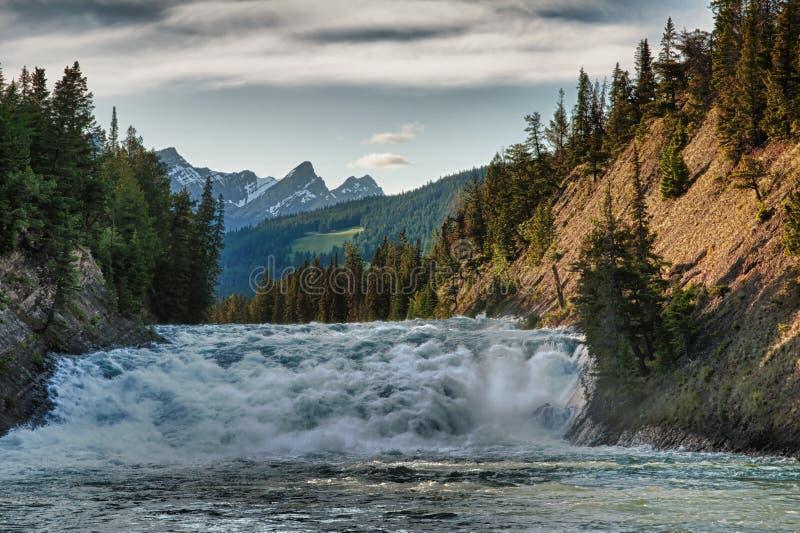 Rapid sur le fleuve, Banff au Canada. photographie stock libre de droits