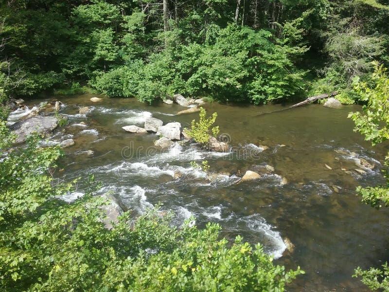 Rapide chauve de rivière photos libres de droits