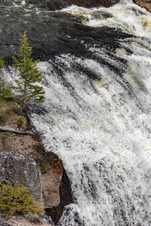 Rapide de cascade photographie stock