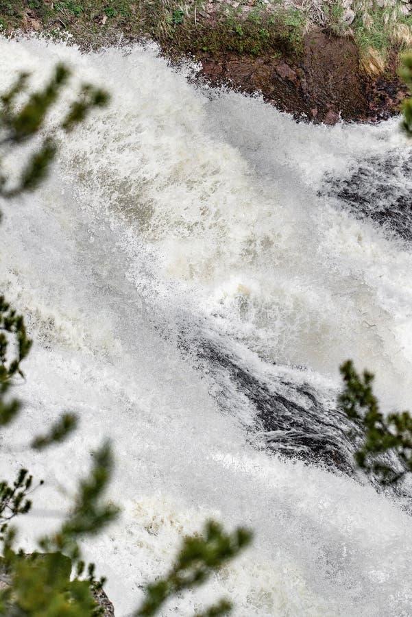Rapide de cascade photo libre de droits
