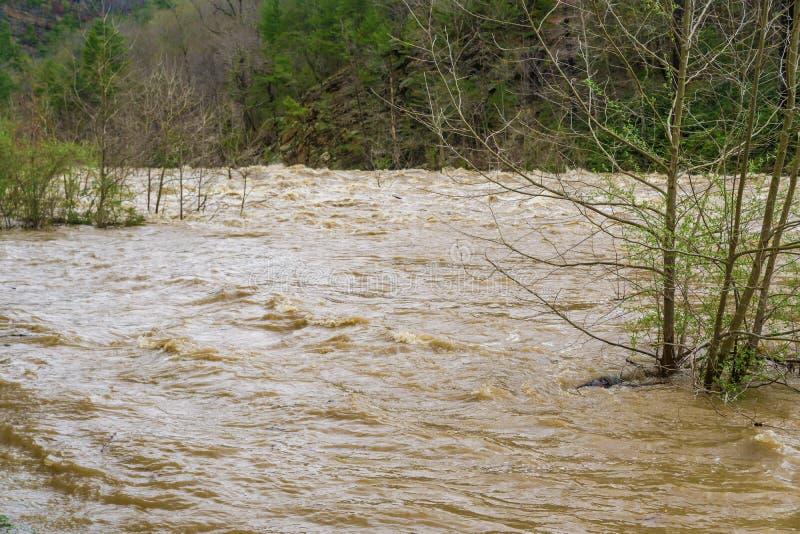Rapide de hautes eaux sur Maury River images stock