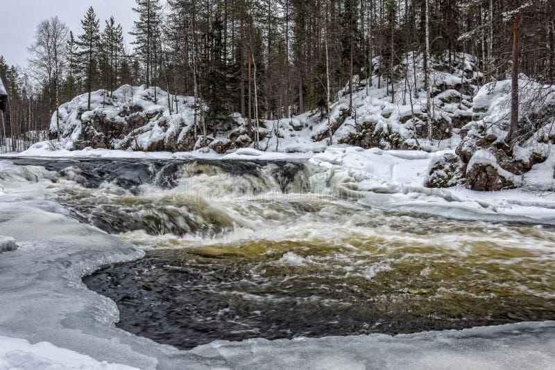 Rapide del fiume di Kitkajoki fotografia stock