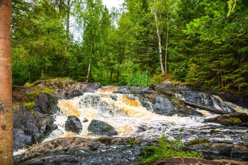 Rapide en pierre sur la rivière de forêt image libre de droits