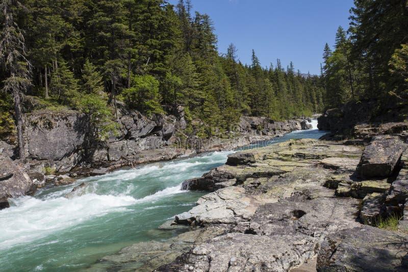 Rapide in Glacier National Park immagini stock
