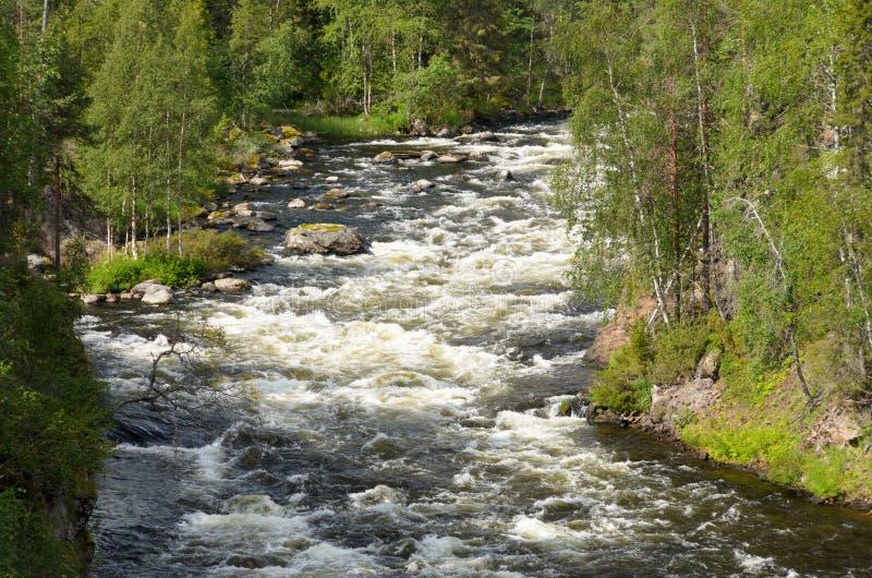 Rapide sur la rivière sauvage photo libre de droits