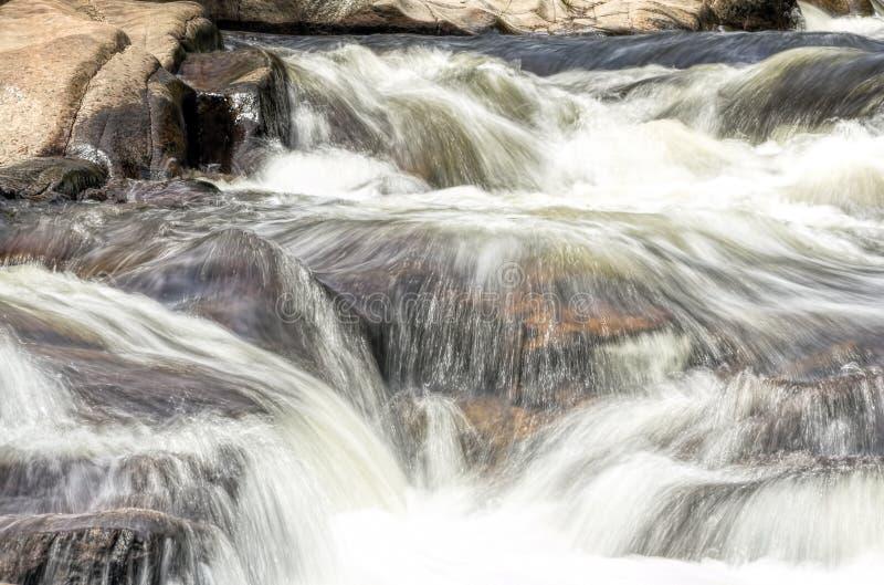 Rapide in una corrente fuori di Boulder, Colorado fotografia stock