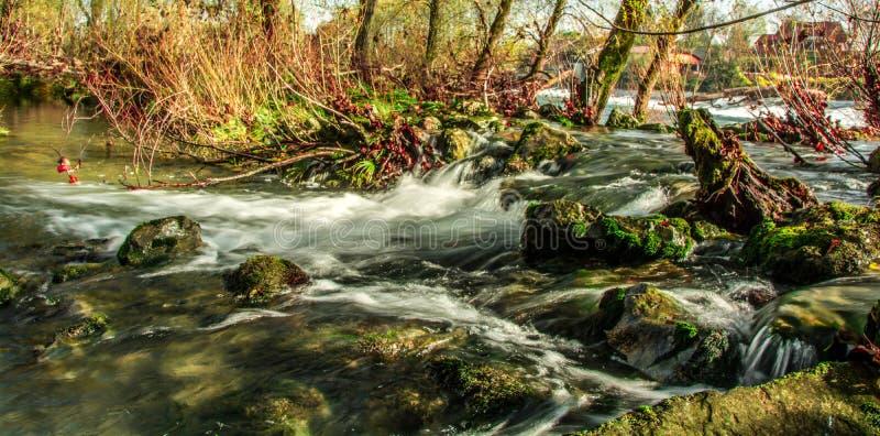 rapids stock fotografie