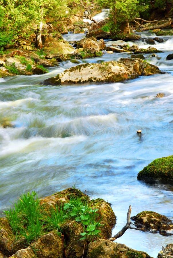 Rapids de fleuve photo libre de droits