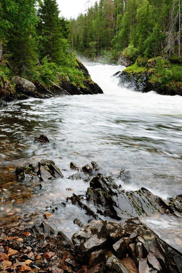 Rapids del fiume di Kitkajoki, Finlandia. fotografia stock libera da diritti