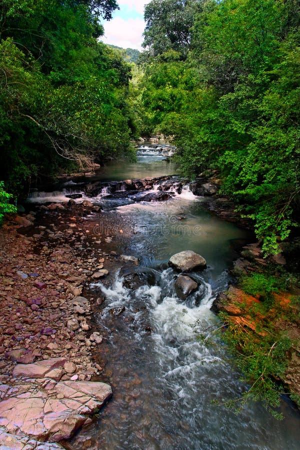 Rapids dell'acqua fotografia stock libera da diritti
