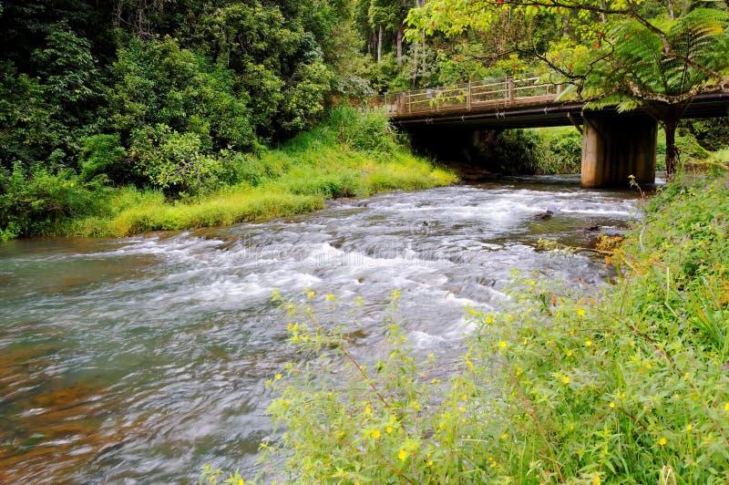 Rapids e ponticello fotografie stock libere da diritti