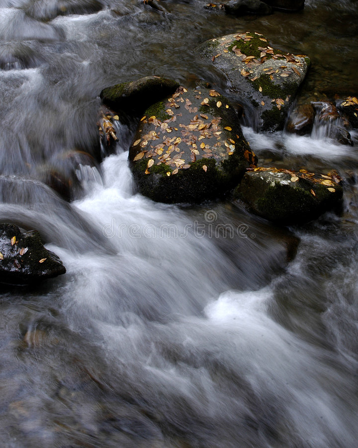 Rapids In The Fall Stock Images