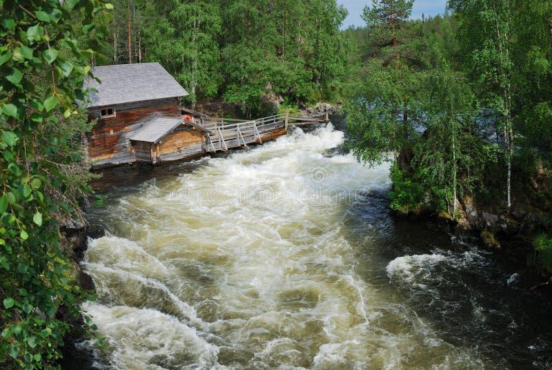 Rapids na floresta do taiga, Juuma, Finlandia. imagens de stock royalty free