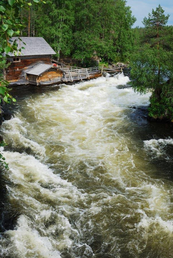 Rapids nella foresta di taiga, Juuma, Finlandia. immagini stock
