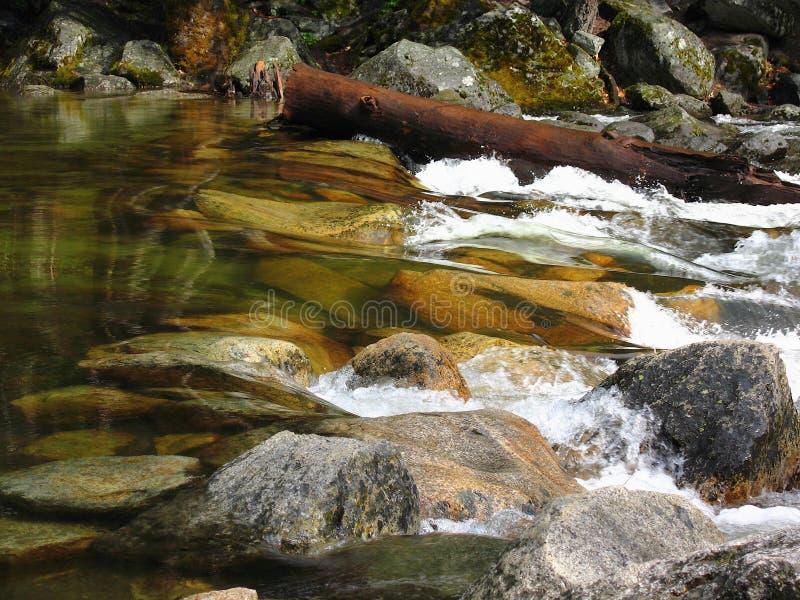 Rapids på Tenaya Creek i slutet av Mirror Lake, Yosemite National Park, Sierra Nevada, Kalifornien, USA royaltyfria foton