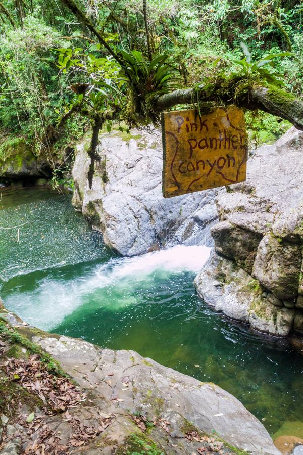 Rapids of Rio Hornito river and a jungle in Pana. Ma stock photography